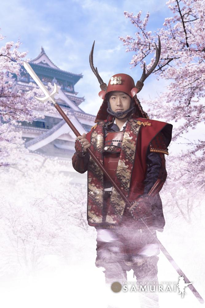 sakura armor